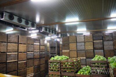 Cтроительство овощехранилищ под ключ